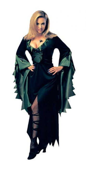 Sorceress Enchantra Costume. 36-38 S / M