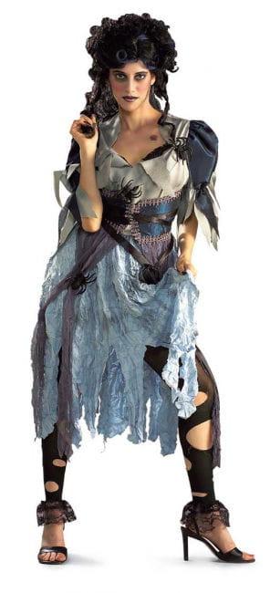 Seductive Spider Witch Costume. M / L