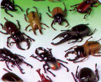 Monster Beetle 12 pieces