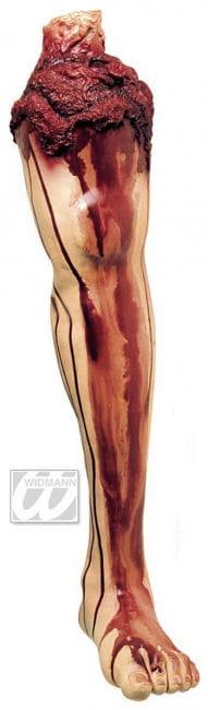 Blutiges Bein mit Oberschenkel