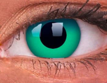 Contact lenses Eiszauber