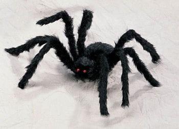 Black Spider Small