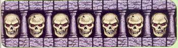Skull Border Film