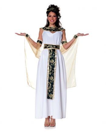 Egyptian Queen XL