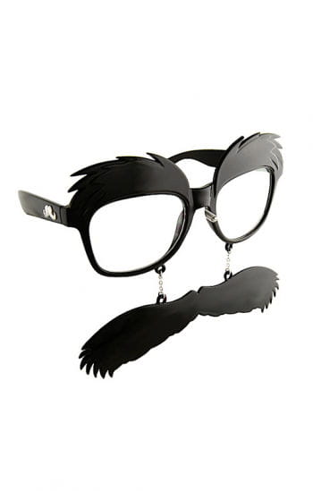 Glasses with walrus mustache