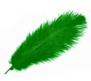 Genuine ostrich feather green