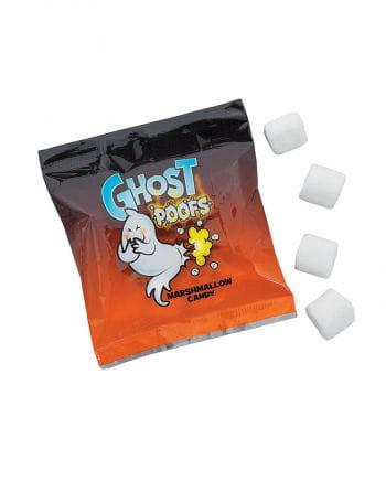 Geister Pups