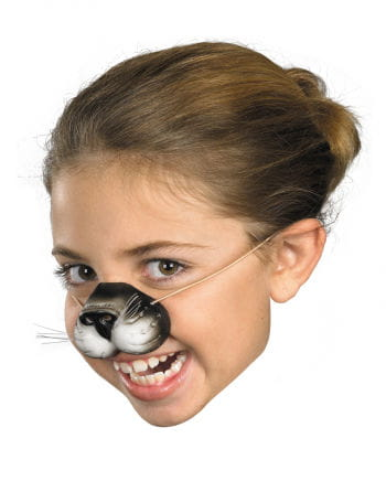 Cats nose for children