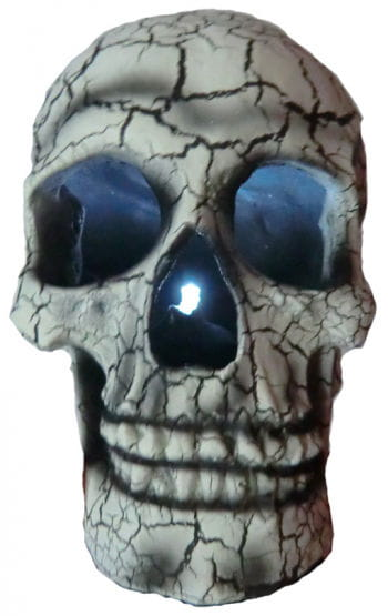 Light Up Skull White