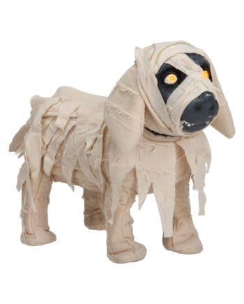 Mummified Dog Animatronic