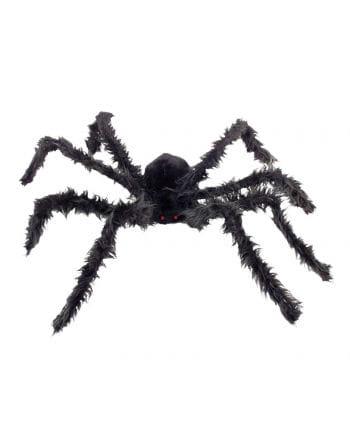 Schwarze Riesen Spinne mit leuchtenden Augen
