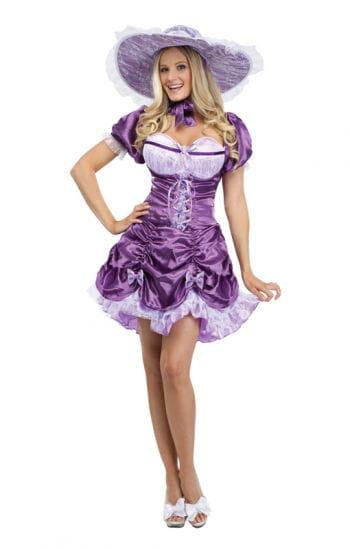 Sexy Southern Lady Costume