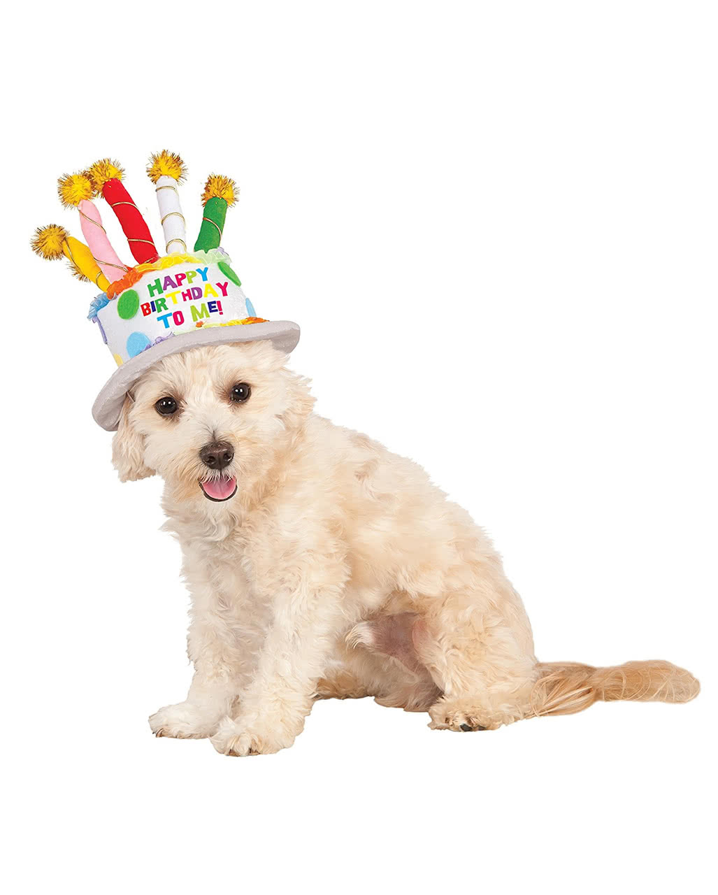 Birthday Cake Hat For Dogs As A Pet Costume