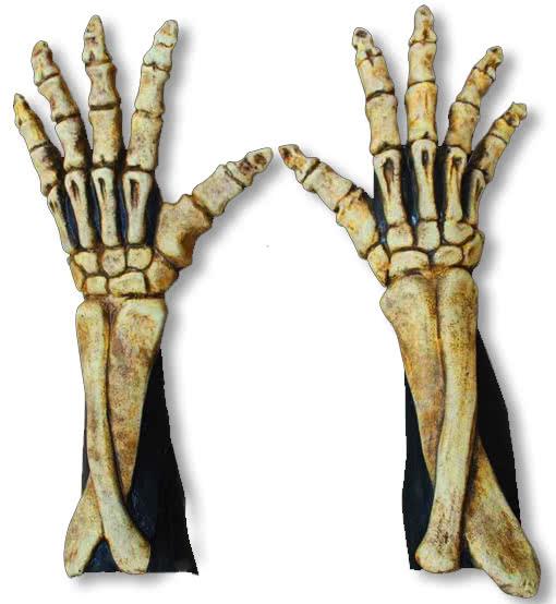 Long Skeleton Gloves Bone Coloured Bone Hands Skeleton Hands Bone ...