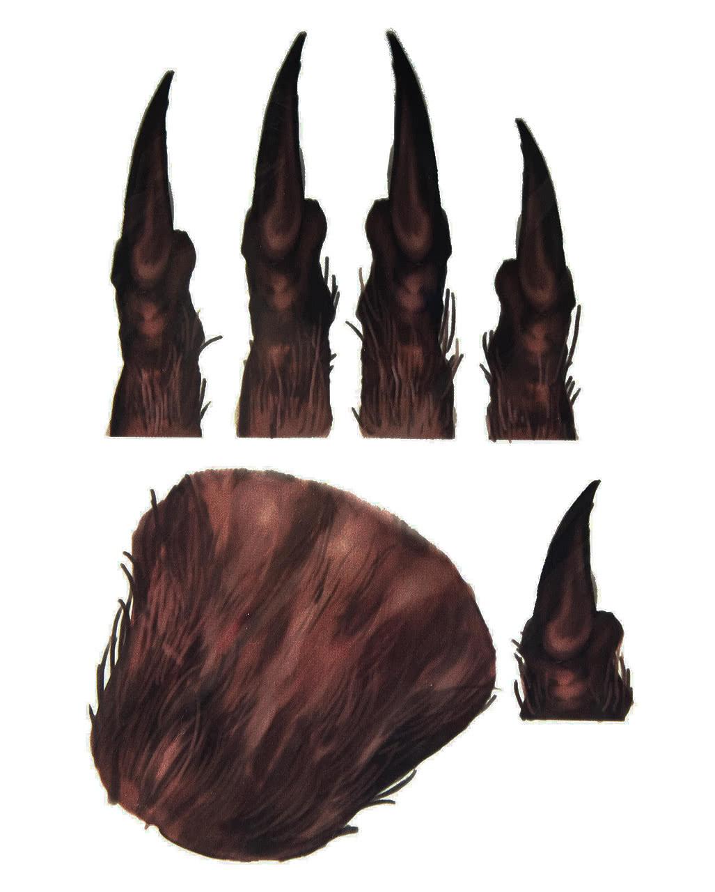Werwolf Handtattoo Aufklebetattoo Für Halloween Horror Shopcom