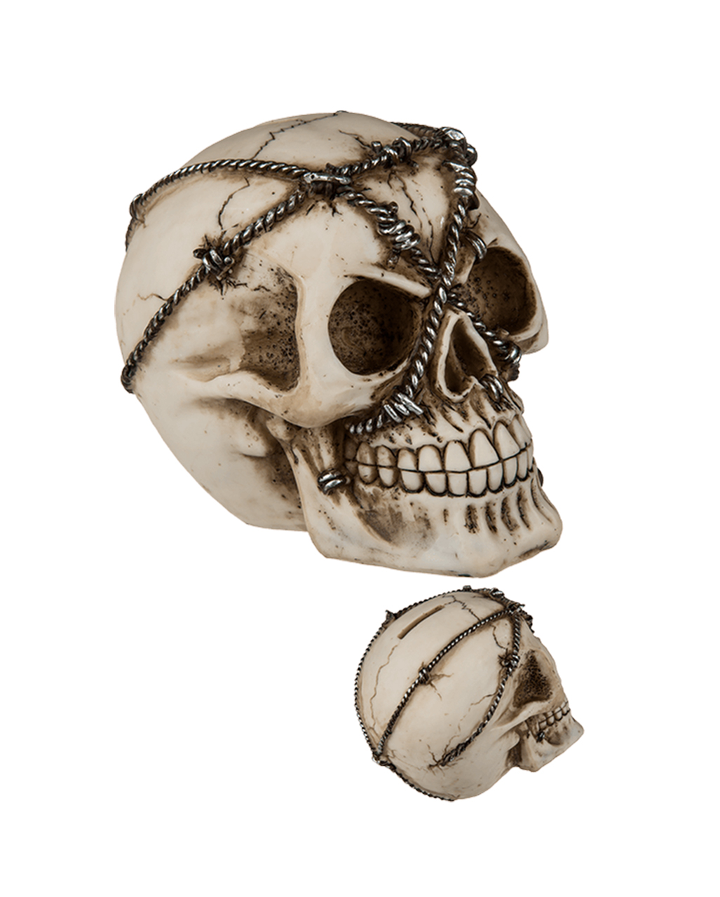 Money Box Skull With Barbed Wire | Deco skull | horror-shop.com