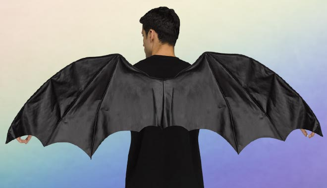 Costume Wings