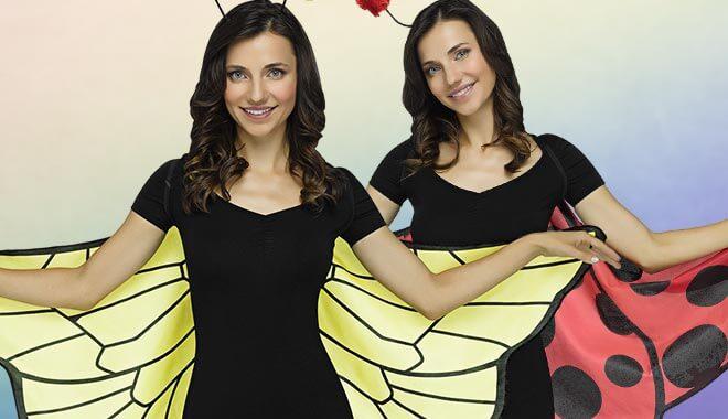 Marienkäfer Flügel & Bienen Flügel