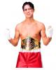 World Champion Boxer Belt