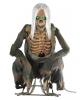 https://inst-1.cdn.shockers.de/hs_cdn/out/pictures/generated/product/1/100_100_100/crouching-bones-skelett-animatronic-figur-geisterbahn-figuren-halloween-zombie-skelett-deko-figur-35884.jpg