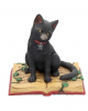 Black Cat With Witch Book