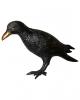 Black Raven Deluxe 43 Cm