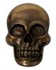 Skull with bottle opener