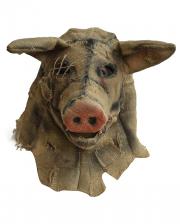 Antik Vogelscheuche Schwein Maske