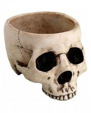 Antique Skull Bowl 470ml