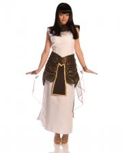 Cleopatra Kostüm Gr. L