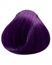 Violett Directions