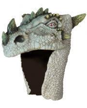 Dragon Helm albino
