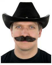 Dark brown mustache