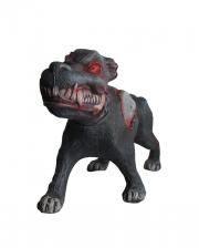 Evil Dog Prop