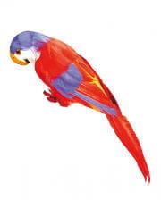 Gefiederter Papagei rot und blau