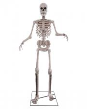 Gigantic Skeleton Halloween Animatronic