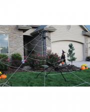 Gigantisches Spinnennetz für den Garten