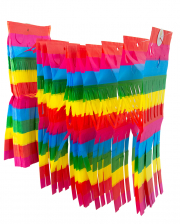 Rainbow Garland With Fringes 10 M