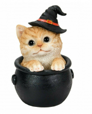 Halloween Kätzchen im Hexenkessel 15cm