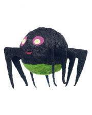 Pinata Spider