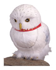 Harry Potter Eule Hedwig