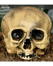 Kunststoff Totenkopf ohne Kiefer 20cm