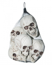 Plastic Skull 6 Pieces