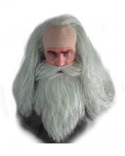 Magician beard and wig set