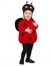 Ladybird Toddler Costume 1-3 Years