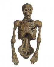 Mumifizierter Leichnam mit LED Augen