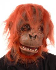 Orang Utan Maske Deluxe