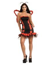 Sexy Marienkäfer Kostüm mit Flügel