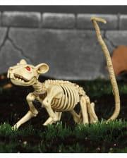 Skeleton Rat 20cm
