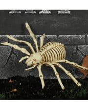 Skeleton Spider 24cm